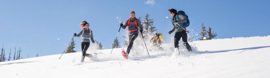 bannière collection randonnée neige