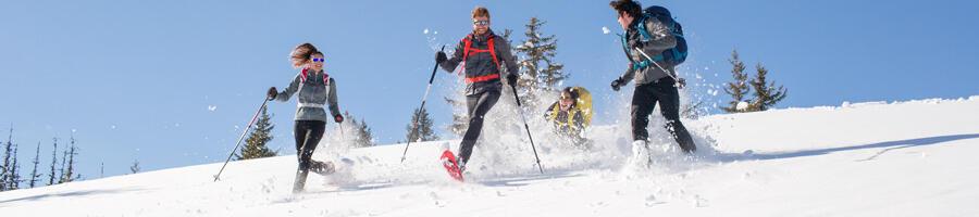 sécurité randonnée neige