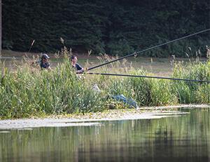Les bienfaits de la pêche au coup