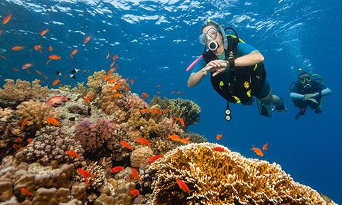 bienfaits de la plongée sous-marine découverte subea decathlon