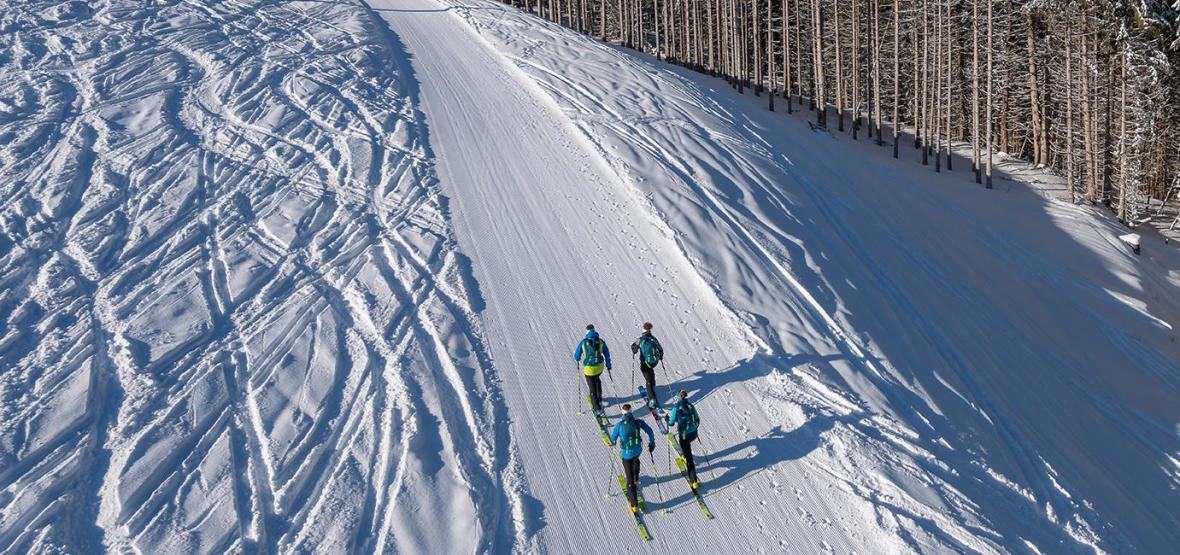 découvrir le ski de randonnée avec les conseils Decathlon