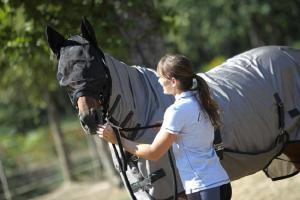 thumbnail-fouganza-protection-cheval