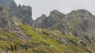 nl_tb_dogtrekking_quechua.jpg