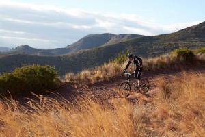veelzijdige mountainbike