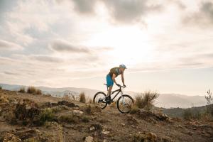 Volledig Geveerde Mountainbike hardtail