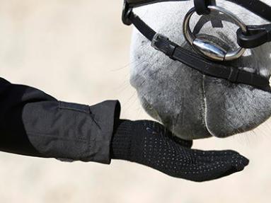 gants équitation