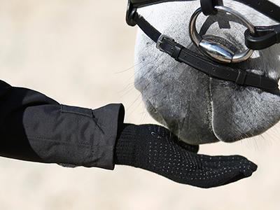 gants.jpg