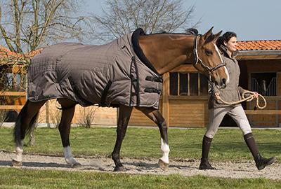 comment_choisir_couverture_cheval_illus2.jpg