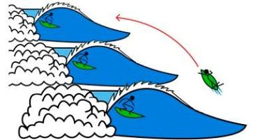 regle_surf_retour_pic