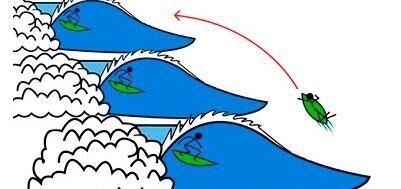 voorrangsregel_surf_terugkeren_top