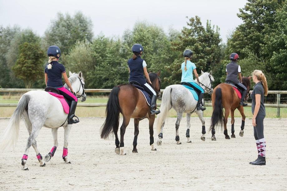 paardrijlessen in groep