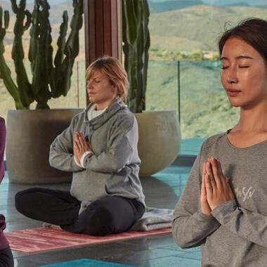 Entdecke das Hatha-Yoga