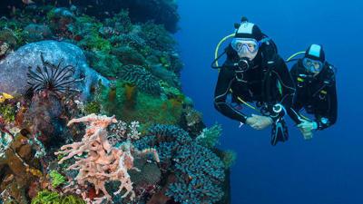 conseils-pratique-du-snorkeling-vers-plongee-bouteille-subea-decathlon-tb.jpg