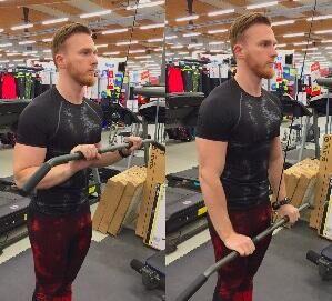programme full body triceps