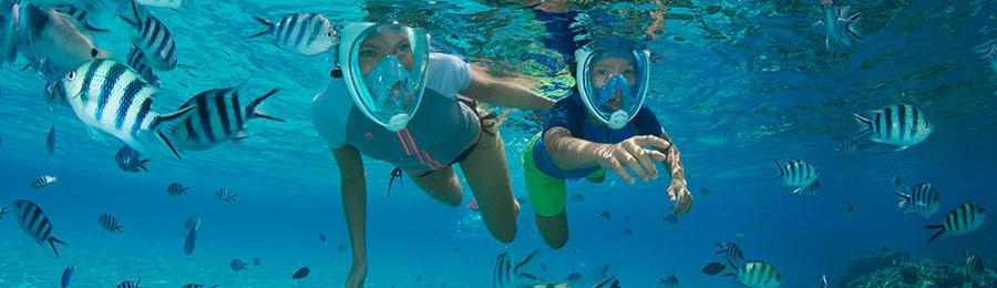 comment-pratiquer-snorkeling-randonnee-palmee-enfants-conditions-meteo-subea-decathlon.jpg
