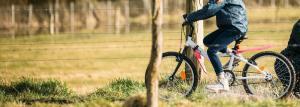 How to choose bike mudguard