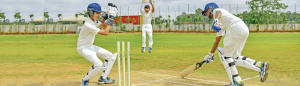 cricket fielding techniques