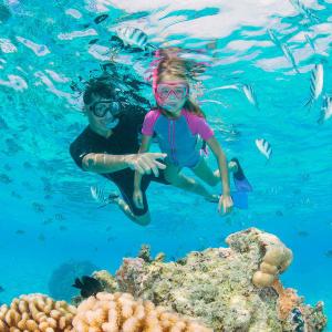 responsible snorkeling
