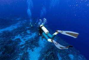 how to choose your diving fins