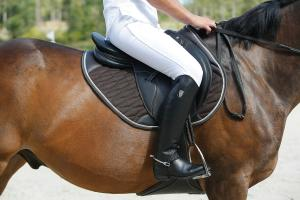 how to choose your horse riding boots