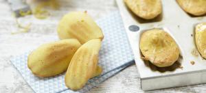 protein madeleine cakes