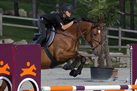 Come scegliere le protezioni degli arti del cavallo
