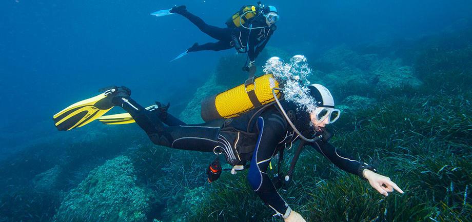 Come aver cura dell'attrezzatura subacquea | DECATHLON