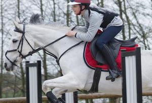 Hoe kies ik de juiste bescherming voor paardrijden?