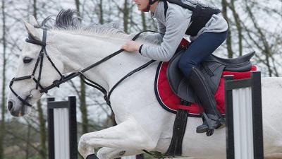 comment_choisir_dorsale_equitation.tn_.jpg