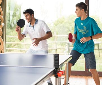 tables-de-tennis-de-table-indoor.png