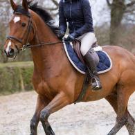 monter_a_cheval_sous_la_pluie