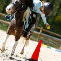 pony_games