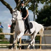 diriger_mon_poney