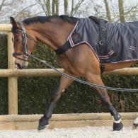 comment_longer_son_cheval