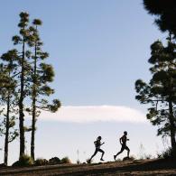 comment établir sa stratégie de course en trail