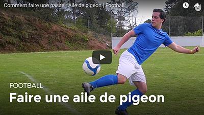 teaser_aile_de_pigeon.png