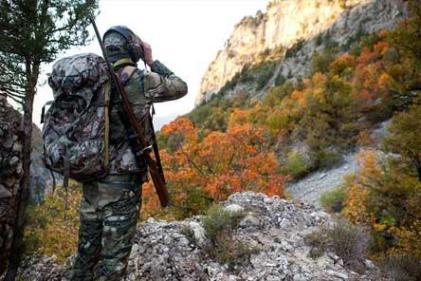 conseils de chasse