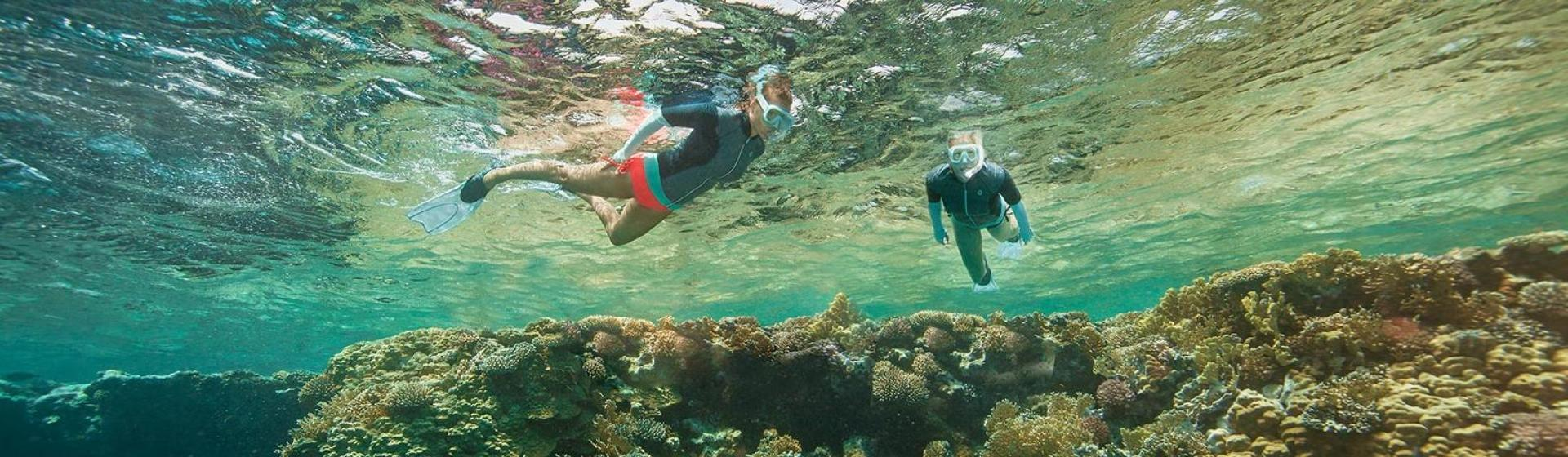 useful tips on snorkeling Similan islands are best in  you probably will get a second stop near another island where you can try some great snorkeling  useful tips about similan islands.