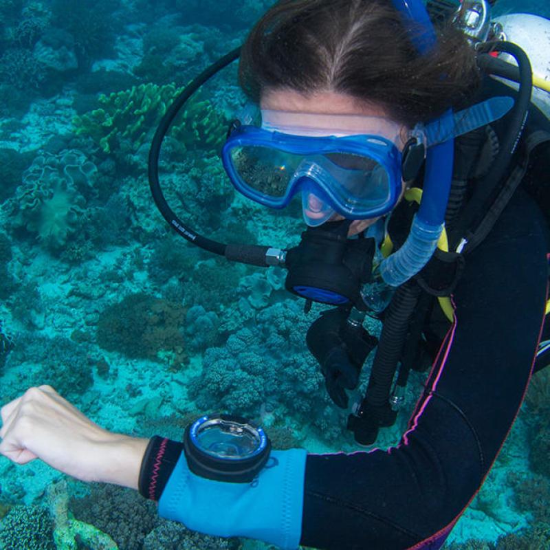 conseil entretien ordinateur plongee subea house reef alor indonesie
