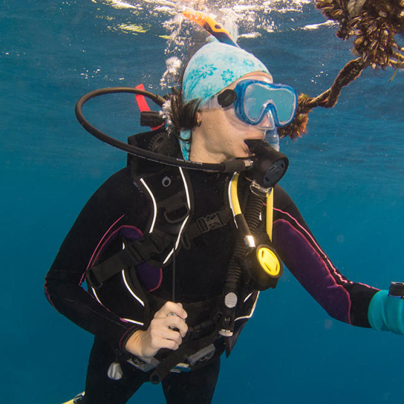 conseil choisir gilet stabilisateur plongée sous marine subea house reef alor indonesie