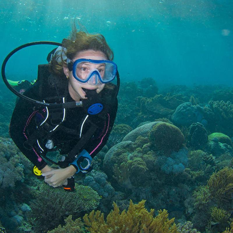 conseil choisir masque plongée snorkeling chasse sous marine subea alor house reef indonésie