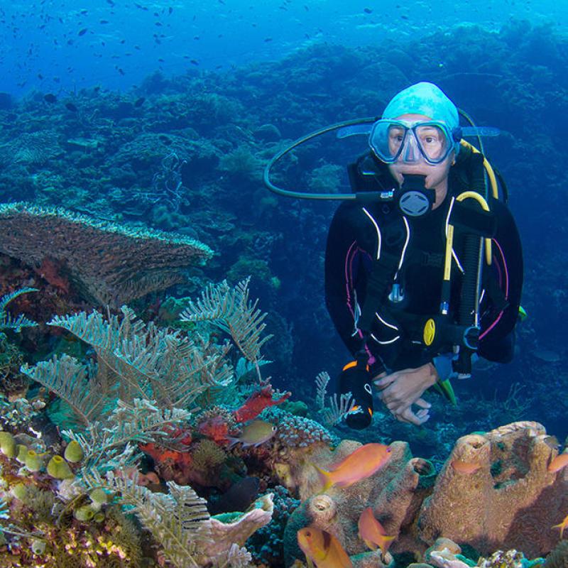 tips scuba diving flight safety indonesia alor rumah biru subea