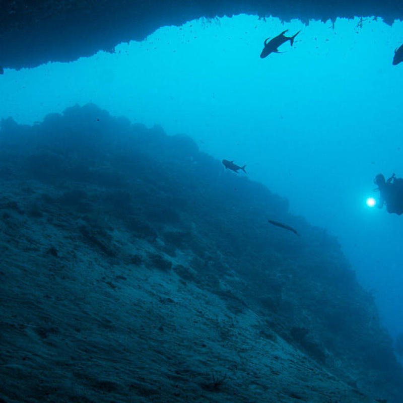 symptômes narcose plongée sous-marine subea sipadan