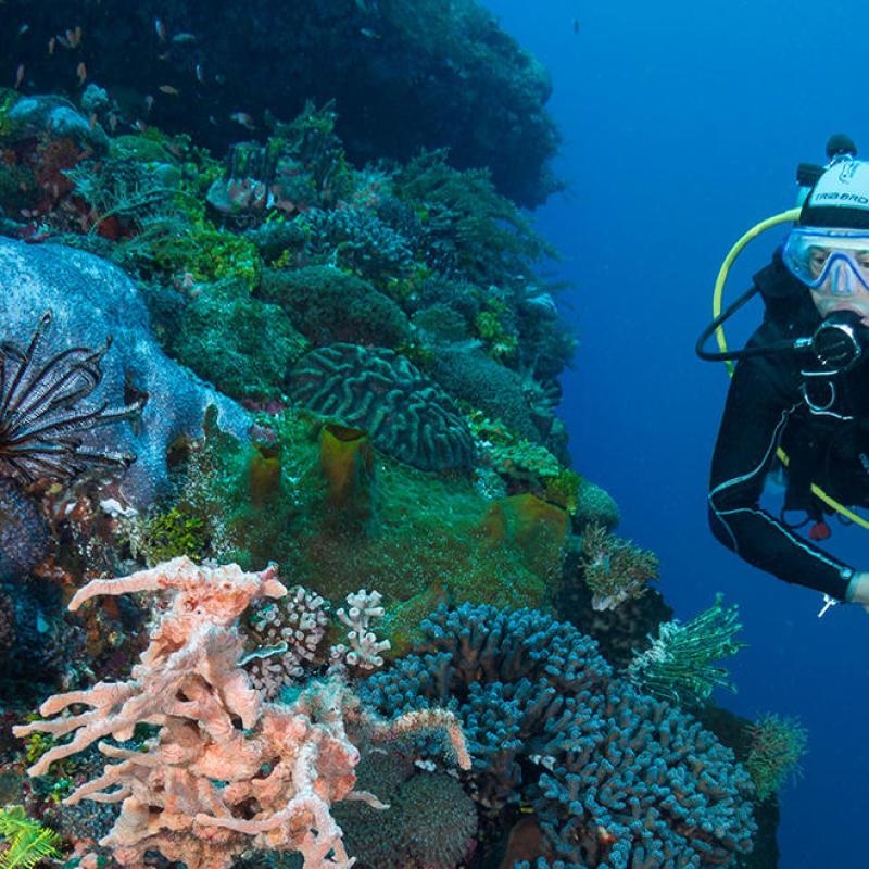 parution article magazine plongez sac bagage plongée subea alor indonésie