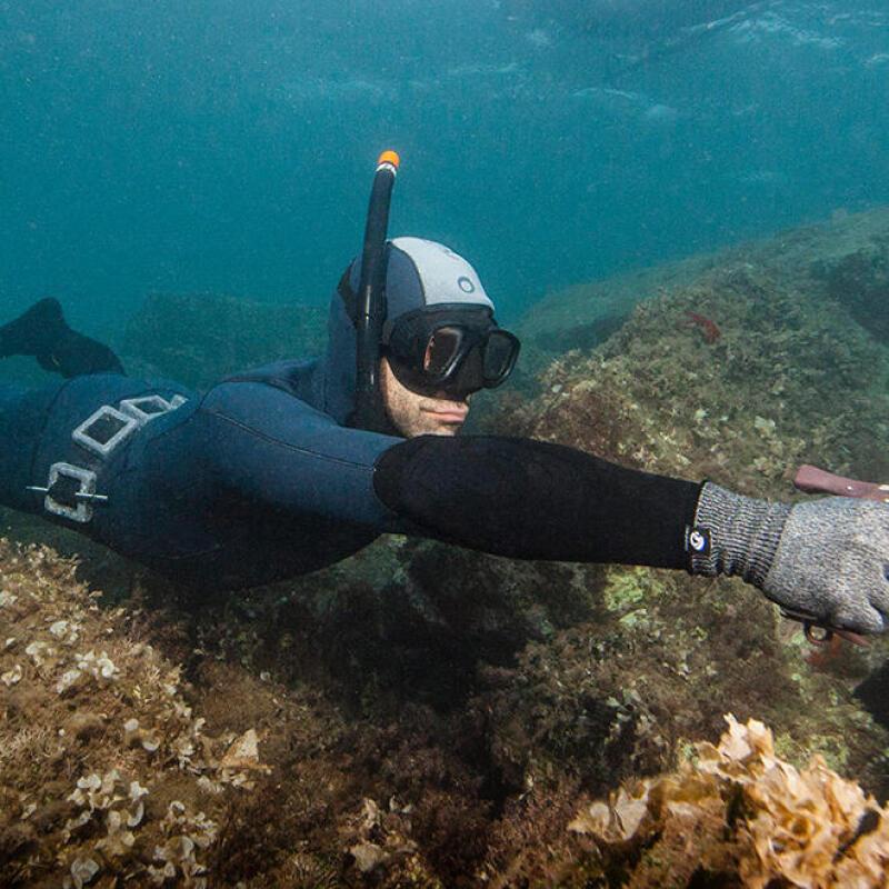 réglementation et sécurité chasse sous-marine subea