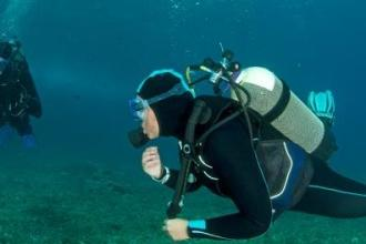 DIVING AND SNORKELING SAFETY TIPS