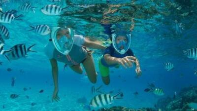 tb-mobile-conseil-securite-snorkeling-subea.jpg