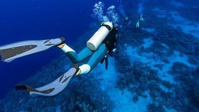 comment-choisir-palmes-plongee-snorkeling-chasse-sous-marine-apnee-640.jpg