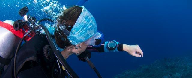 Choosing your spearfishing / freediving equipment | Subea