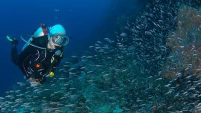 tb-mobile-conseil-choisir-lestage-plongee-subea-house-reef-alor-indonesie.jpg